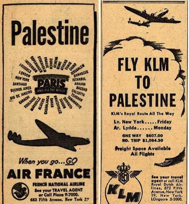Fly KLM to Palestine